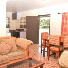 Апартаменты Narayan's Apartment комната для гостей фото 4