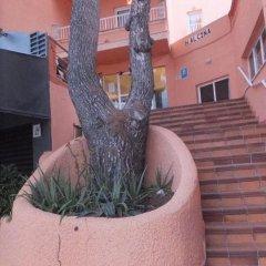 Отель Hostal Alcina фото 7