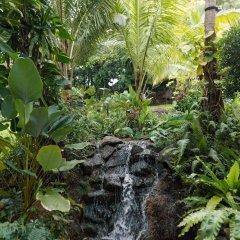 Отель Sheraton Samui Resort фото 10