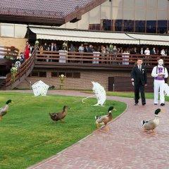Гостиница Superior Golf and SPA Resort с домашними животными