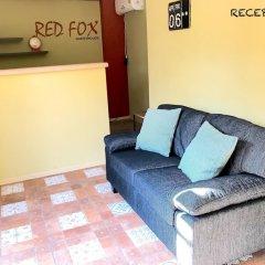 Отель Red Fox Guesthouse интерьер отеля фото 2