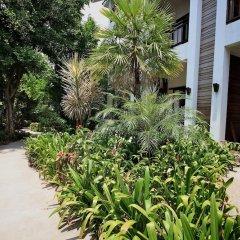 Отель Lamai Wanta Beach Resort фото 9
