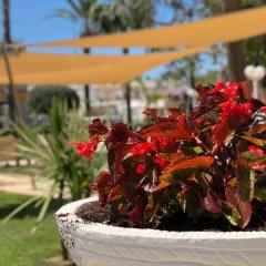 Отель Planas Испания, Салоу - 4 отзыва об отеле, цены и фото номеров - забронировать отель Planas онлайн фото 3
