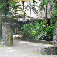 Отель Colo-I-Suva Rainforest Eco Resort Вити-Леву фото 17