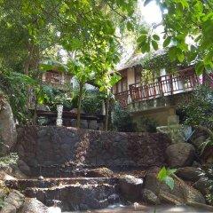 Отель Thipwimarn Resort Koh Tao Таиланд, Остров Тау - отзывы, цены и фото номеров - забронировать отель Thipwimarn Resort Koh Tao онлайн фото 6