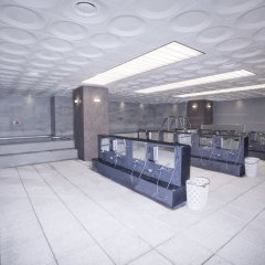 Отель Novotel Ambassador Daegu Южная Корея, Тэгу - отзывы, цены и фото номеров - забронировать отель Novotel Ambassador Daegu онлайн интерьер отеля фото 3
