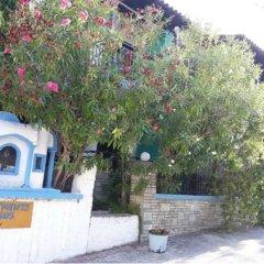 Отель Tassos 2 Греция, Пефкохори - отзывы, цены и фото номеров - забронировать отель Tassos 2 онлайн фото 5