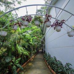 Отель Hanh Ngoc Bungalow фото 5