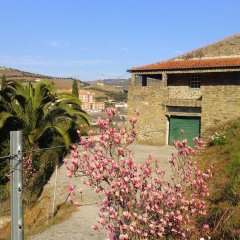 Отель Villa With 3 Bedrooms in Lamego, With Wonderful Mountain View, Private детские мероприятия