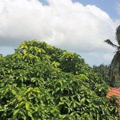 Отель YoYo Hostel Шри-Ланка, Негомбо - отзывы, цены и фото номеров - забронировать отель YoYo Hostel онлайн фото 6