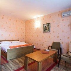 Отель Family Hotel Victoria Gold Болгария, Димитровград - отзывы, цены и фото номеров - забронировать отель Family Hotel Victoria Gold онлайн фото 29
