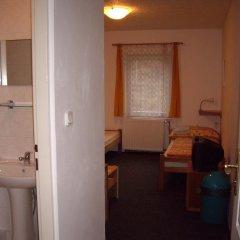 Отель Pension Dobroucky комната для гостей фото 2