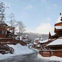 Отель KOREA QUALITY Elf Spa Resort Hotel Южная Корея, Пхёнчан - отзывы, цены и фото номеров - забронировать отель KOREA QUALITY Elf Spa Resort Hotel онлайн