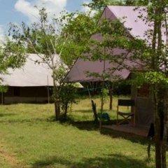 Отель Big Game Camp Yala Шри-Ланка, Катарагама - отзывы, цены и фото номеров - забронировать отель Big Game Camp Yala онлайн фото 8