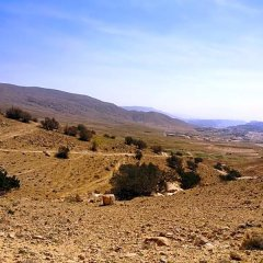 Отель Eco BIA Sahwah Camp Иордания, Вади-Муса - отзывы, цены и фото номеров - забронировать отель Eco BIA Sahwah Camp онлайн фото 3