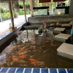 Отель Eddy's Place Самуи бассейн