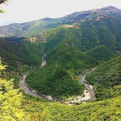 Отель Melanya Mountain Retreat Болгария, Ардино - отзывы, цены и фото номеров - забронировать отель Melanya Mountain Retreat онлайн фото 11
