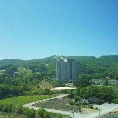 Отель Phoenix Greentel Южная Корея, Пхёнчан - отзывы, цены и фото номеров - забронировать отель Phoenix Greentel онлайн балкон
