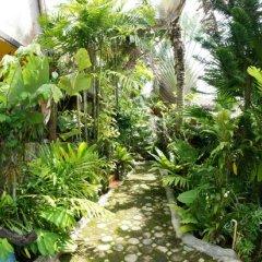 Отель Ruan Mai Sang Ngam Resort фото 9