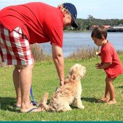 Отель Holiday Haven Burrill Lake Австралия, Сассекс-Инлет - отзывы, цены и фото номеров - забронировать отель Holiday Haven Burrill Lake онлайн с домашними животными
