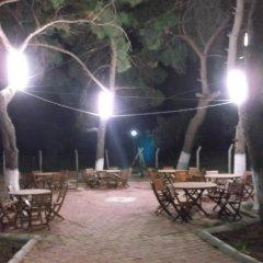 Geyikli Herrara Турция, Тевфикие - отзывы, цены и фото номеров - забронировать отель Geyikli Herrara онлайн фото 10