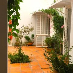 Отель Casa Canario Bed & Breakfast фото 20