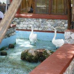 Lydia Hotel бассейн