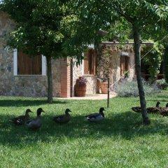 Отель Azienda Agrituristica Vivi Natura Италия, Помпеи - отзывы, цены и фото номеров - забронировать отель Azienda Agrituristica Vivi Natura онлайн фото 10