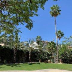Отель Los Milagros Hotel Мексика, Кабо-Сан-Лукас - отзывы, цены и фото номеров - забронировать отель Los Milagros Hotel онлайн фото 17