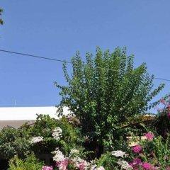 Jet Pension Турция, Патара - отзывы, цены и фото номеров - забронировать отель Jet Pension онлайн фото 10