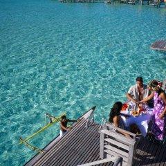 Отель InterContinental Le Moana Resort Bora Bora с домашними животными