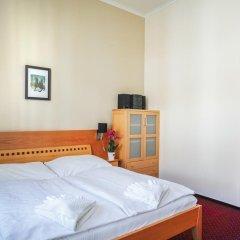 Отель Penzion U Salzmannu Пльзень комната для гостей фото 2