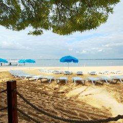 Гостиница Березка пляж фото 2