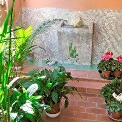 Отель Alfa Tao Италия, Риччоне - отзывы, цены и фото номеров - забронировать отель Alfa Tao онлайн бассейн
