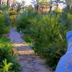 Отель Riad Tagmadart Ferme D'hôte Марокко, Загора - отзывы, цены и фото номеров - забронировать отель Riad Tagmadart Ferme D'hôte онлайн фото 17