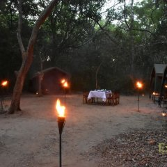 Отель Mahoora Tented Safari Camp - Kumana Шри-Ланка, Яла - отзывы, цены и фото номеров - забронировать отель Mahoora Tented Safari Camp - Kumana онлайн фото 13