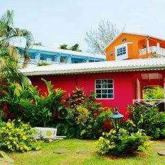 Отель Beachcombers Hotel Сент-Винсент и Гренадины, Остров Бекия - отзывы, цены и фото номеров - забронировать отель Beachcombers Hotel онлайн фото 7