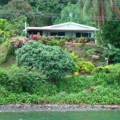 Отель Gecko Lodge Fiji Савусаву приотельная территория