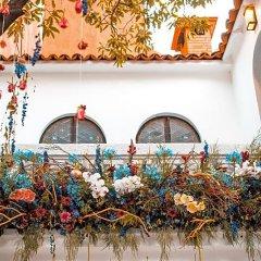 Отель Orchid House Polanco Мехико фото 10