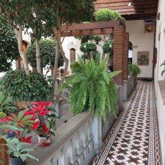 Отель Casa Aldama Мексика, Мехико - отзывы, цены и фото номеров - забронировать отель Casa Aldama онлайн фото 8