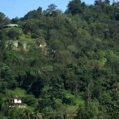 Отель Kandy Paradise Resort фото 7