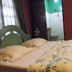 Hotel Green View Bandarawela комната для гостей фото 2