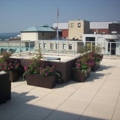 Отель Bluebird Suites DC Financial District США, Вашингтон - отзывы, цены и фото номеров - забронировать отель Bluebird Suites DC Financial District онлайн балкон