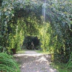 Отель The Home Villa Leonati Art And Garden Италия, Падуя - отзывы, цены и фото номеров - забронировать отель The Home Villa Leonati Art And Garden онлайн приотельная территория