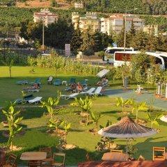 Отель Kleopatra Royal Palm Аланья спортивное сооружение