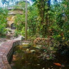 Отель Great Huts Ямайка, Порт Антонио - отзывы, цены и фото номеров - забронировать отель Great Huts онлайн фото 2