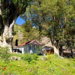 Отель Tioga Lodge at Mono Lake США, Ли Вайнинг - отзывы, цены и фото номеров - забронировать отель Tioga Lodge at Mono Lake онлайн фото 15