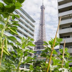 Отель Pullman Paris Tour Eiffel Франция, Париж - 1 отзыв об отеле, цены и фото номеров - забронировать отель Pullman Paris Tour Eiffel онлайн фото 7