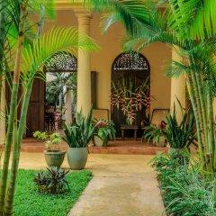 Отель Mango House фото 9