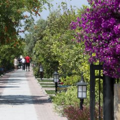Hotel Ozlem Garden - All Inclusive фото 4